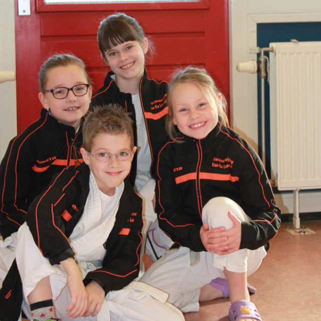kan-ku, karate, demo, vereniging, training, clinics