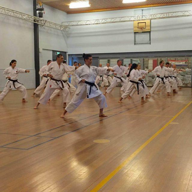 http://karateverenigingkanku.nl/wp-content/uploads/2018/02/Stage-Sensei-Sawada-en-Sensei-R.-Wewengkan-1-640x640.jpg