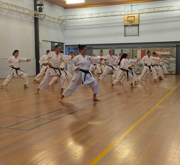 http://karateverenigingkanku.nl/wp-content/uploads/2018/02/Stage-Sensei-Sawada-en-Sensei-R.-Wewengkan-600x550.jpg