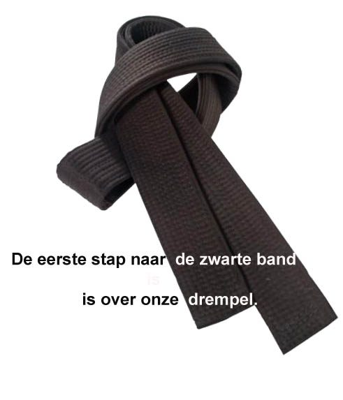 http://karateverenigingkanku.nl/wp-content/uploads/2018/02/Zwarte-band-over-drempel-NIEUW-1-491x573.jpg