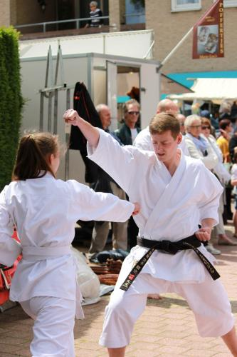 Karate demonstratie Kan-Ku 2016 (10)