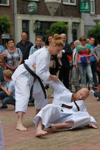 Karate demonstratie Kan-Ku 2016 (14)