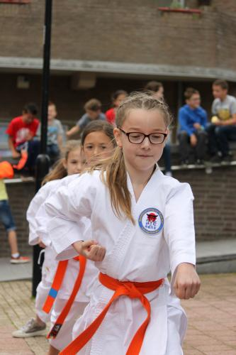 Karate demonstratie Kan-Ku 2016 (16)