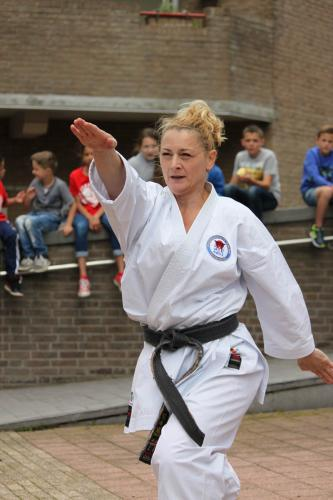 Karate demonstratie Kan-Ku 2016 (17)