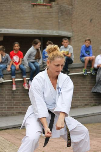 Karate demonstratie Kan-Ku 2016 (18)