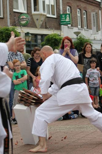 Karate demonstratie Kan-Ku 2016 (21)