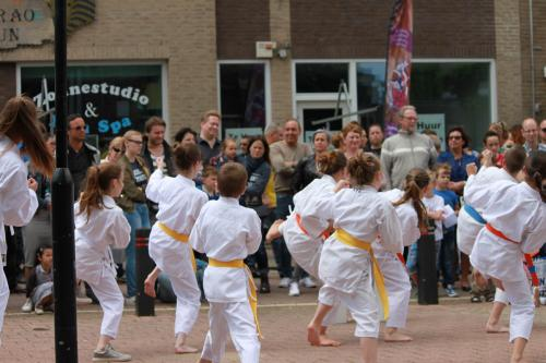 Karate demonstratie Kan-Ku 2016 (7)