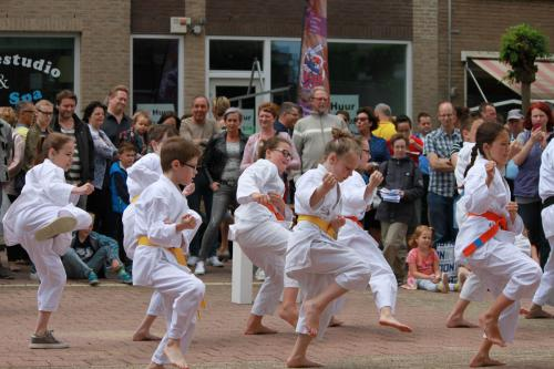 Karate demonstratie Kan-Ku 2016 (8)